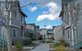 Market Dominated By Foreclosures