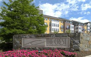ROSS Co. Launches New Corporate Structure