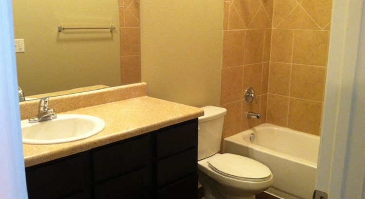 Bathroom Interior at the Oakland Hills Apartments at Floresville, TX