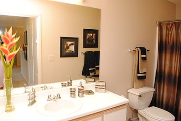Bathroom at the Oak Pointe Apartment Homes in Simpsonville , SC
