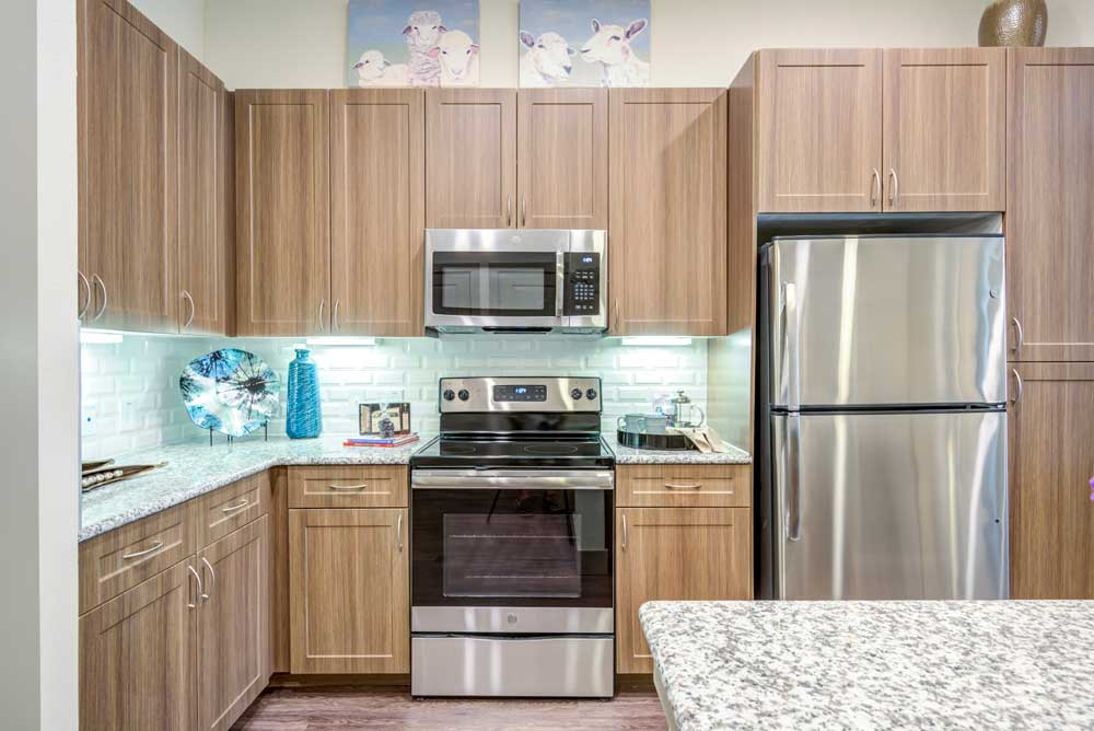 Stainless Steel Appliances at Oaks 55 Apartments in Euless, TX