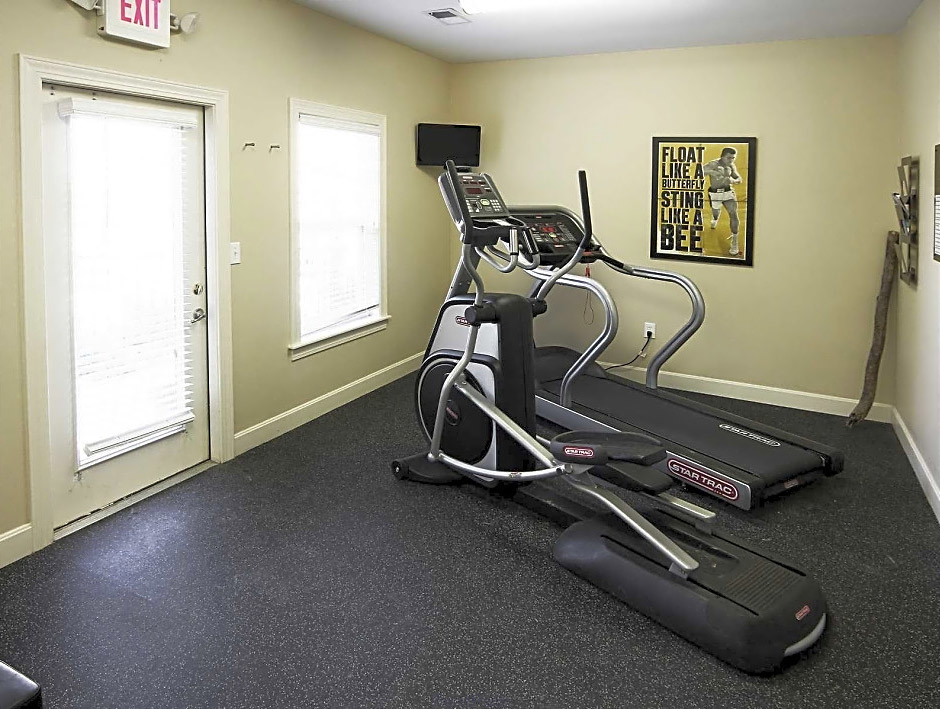 Professional Gym Equipment at Overlook Terraces Apartments in Louisville, KY