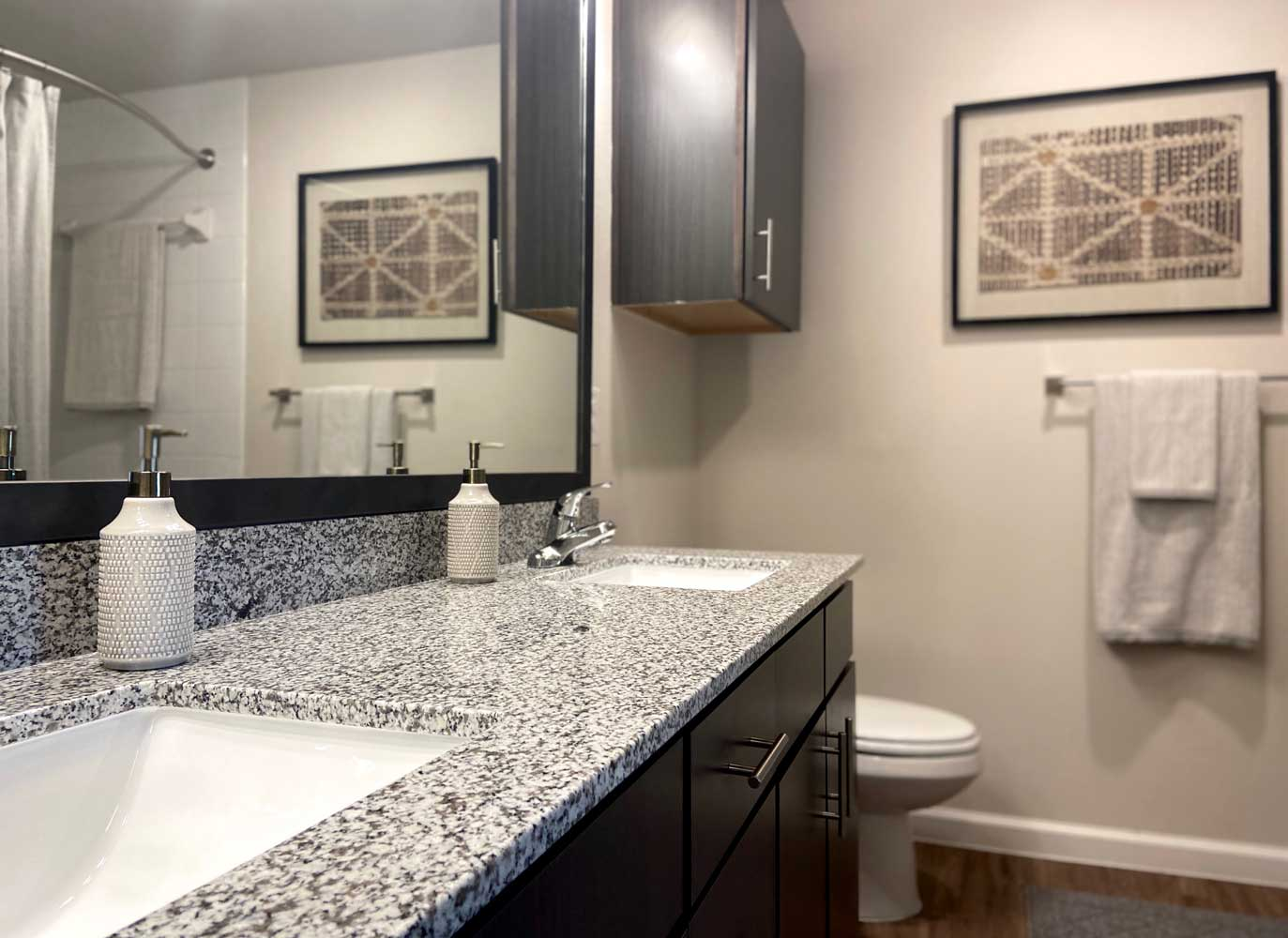 Bathroom at Oxford at Santa Clara Apartments in Pflugerville, Texas