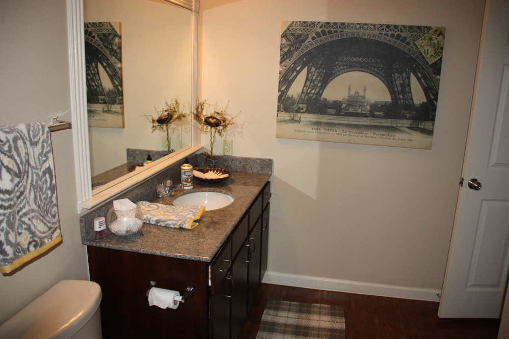 Modern Bathroom Features at the Oxford at Country Club Apartments in Baytown, TX