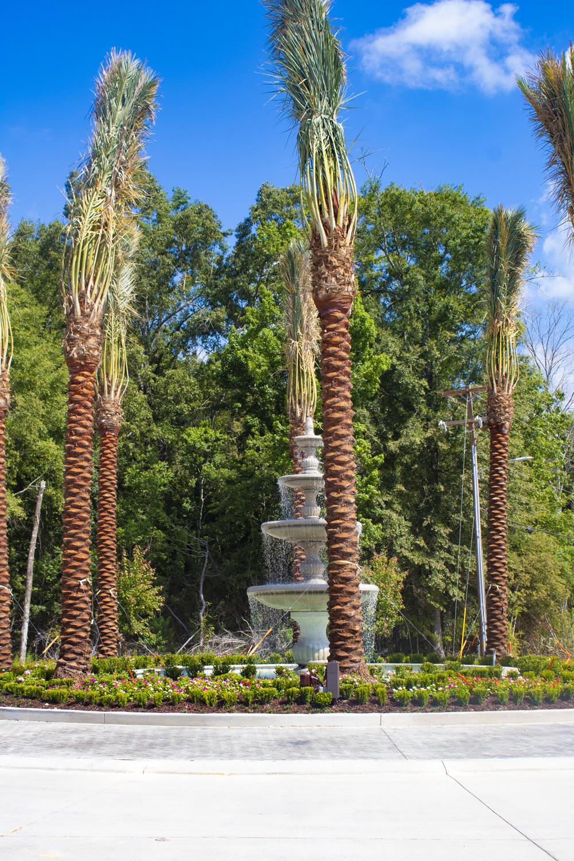 Mature Trees at The Palms at Juban Lakes Apartments in Denham Springs, Louisiana