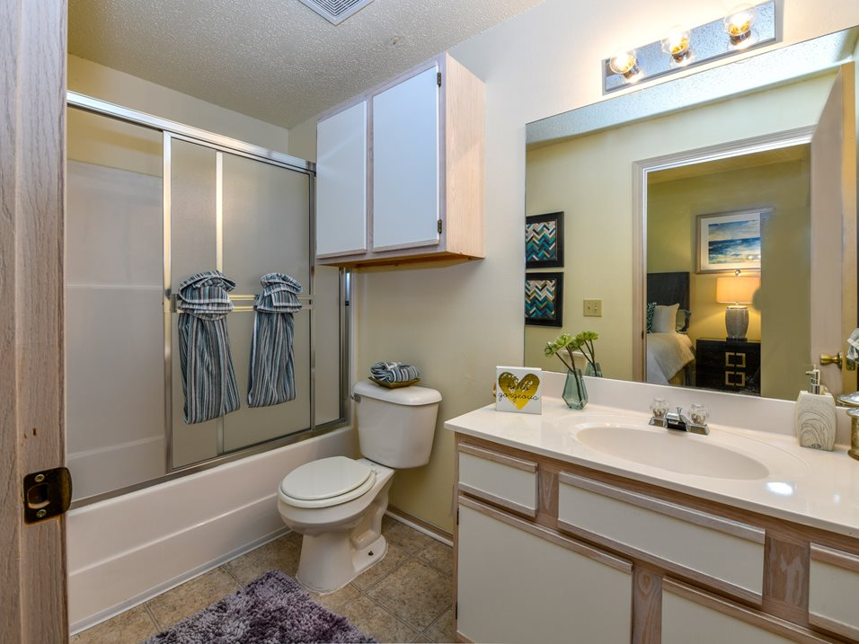 Shower and Tub Combination at The Park at Forest Hill Apartments in Memphis, Tennessee
