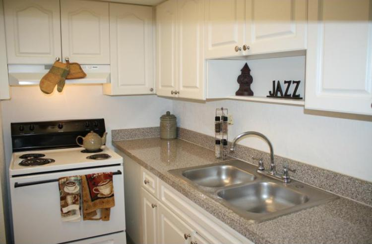 Kitchen at the Park Pointe Apartments in Tampa Bay, FL