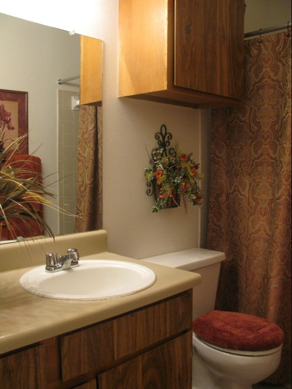 Shower and Tub Combination at The Residences at Mesa Ridge Apartments in Garland, Texas