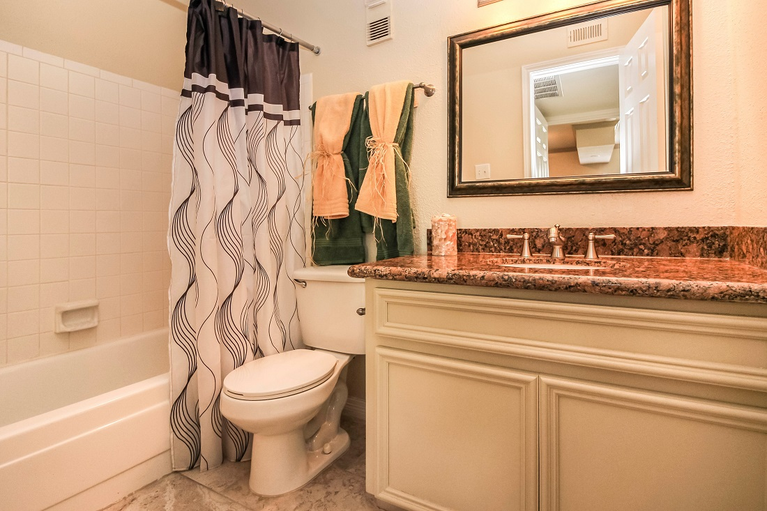 Bathtub and Shower at Pine Terrace Apartments in Houston, Texas