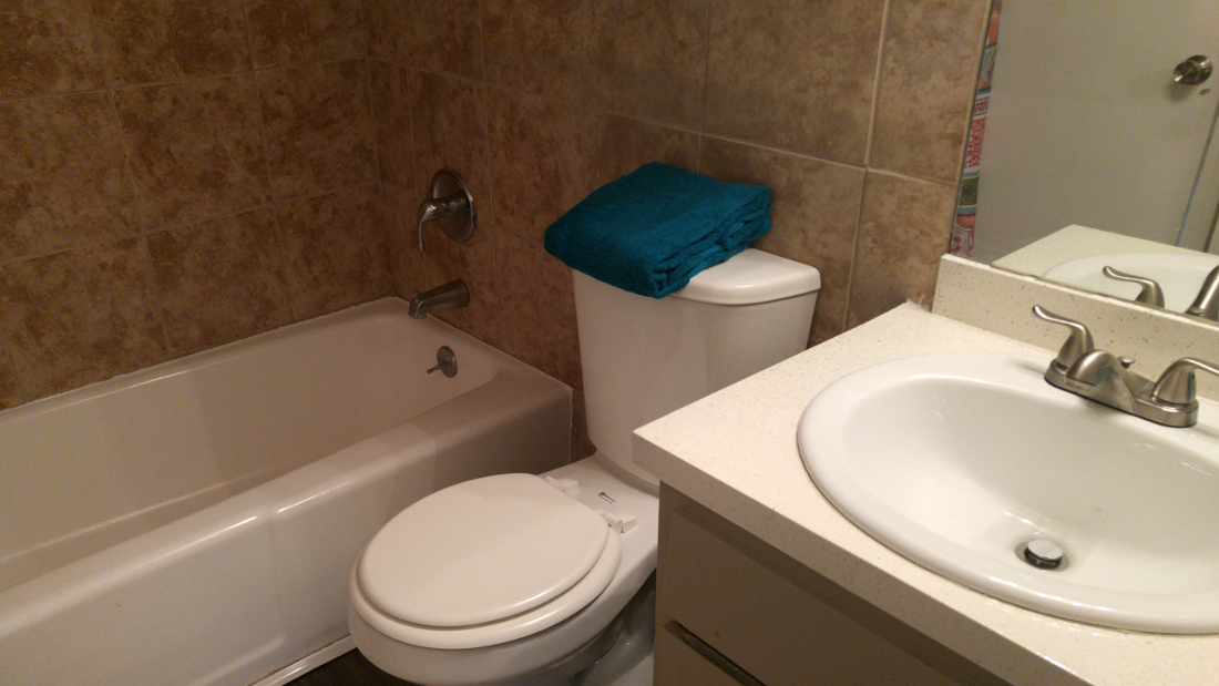Newly Renovated Bathroom at The Point on Redmond Apartments in College Station, TX