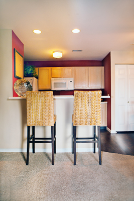 Kitchen at the Polo Downs Apartments in Fenton, MO