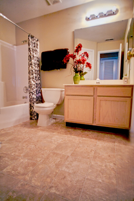 Bathroom at the Polo Downs Apartments in Fenton, MO