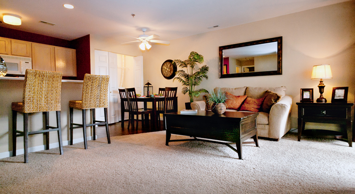 Living Room at the Polo Downs Apartments in Fenton, MO