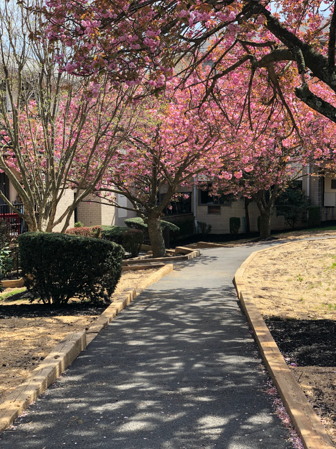 Plenty of Outdoor Spaces at Riverview at Nyack Apartments in Nyack, New York