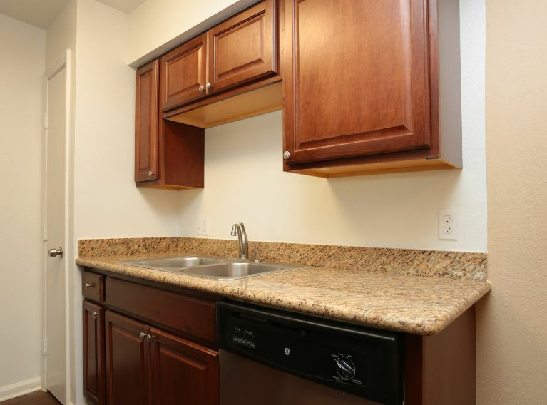 Dishwasher at Sienna Villas Apartment Homes in Freeport, TX