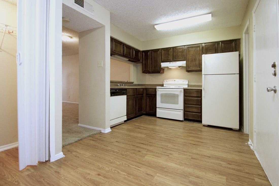 Ample Kitchen Cabinet Storage at Songbird Apartments in San Antonio, Texas