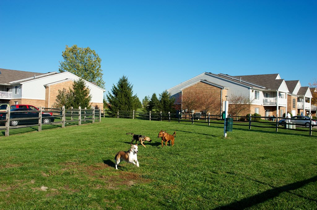 Fenced-In Dog Park at Stone Bridge Apartments in Mason, Ohio