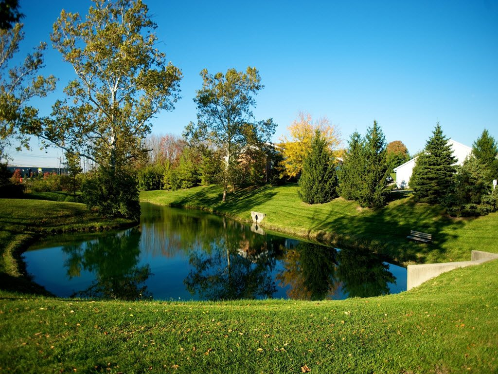 Natural Scenery with Trees and Pond at Stone Bridge Apartments in Mason, Ohio