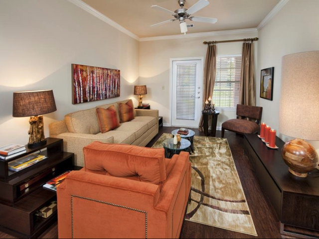 Entertainment Areas at The Oxford at Tech Ridge Apartments in Austin, TX