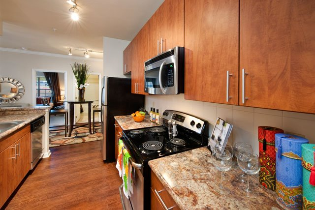 Faux Granite Countertops at The Oxford at Tech Ridge Apartments in Austin, TX