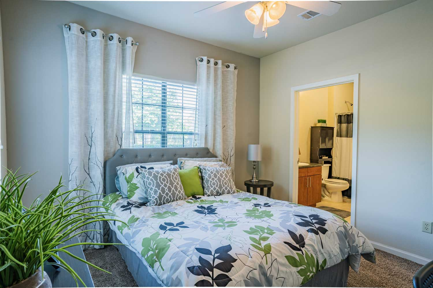 Stylish Ceiling Fans at Tech Ridge Apartments in Austin, TX