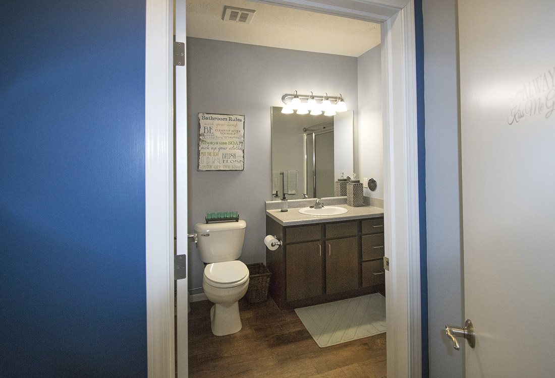 Spacious Bathroom Vanities at The Oaks at Lakeview Apartments in Ralston, NE