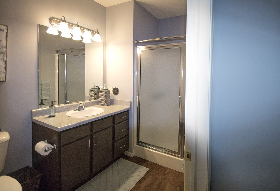 Walk-In Showers at The Oaks at Lakeview Apartments in Ralston, NE
