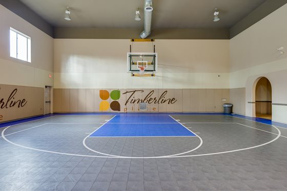 Resident Basketball Court at Timberline Place Apartments in Flagstaff, Arizona