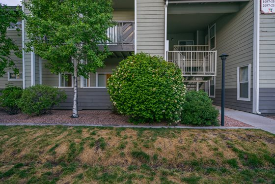 Lush Green Community Landscaping at Timberline Place Apartments in Flagstaff, Arizona