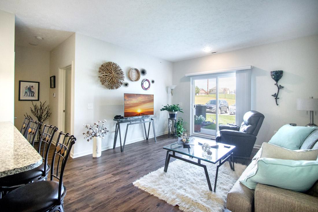Living Room at Titan Springs Apartments in Papillion, NE.