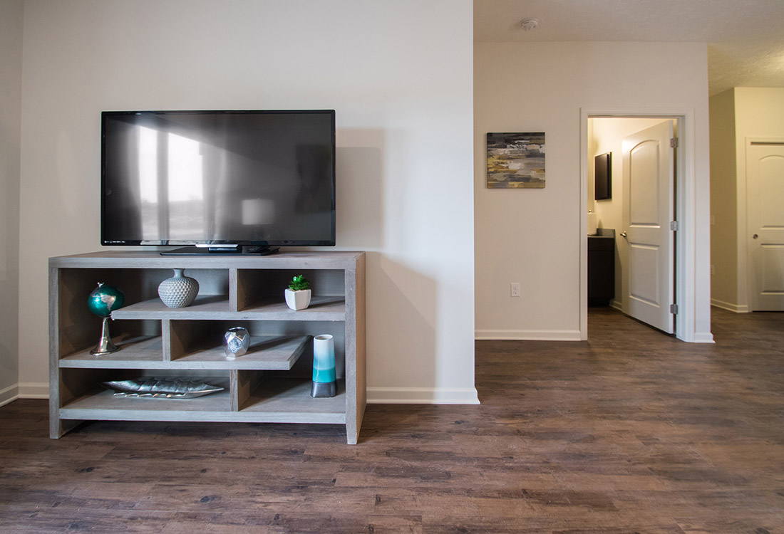 Laminate Flooring at Titan Springs Apartments in Papillion, Nebraska