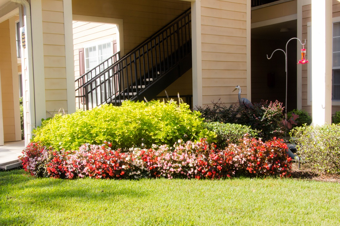 Mature Gardens at Village at Southern Oaks Apartments in Pensacola, FL