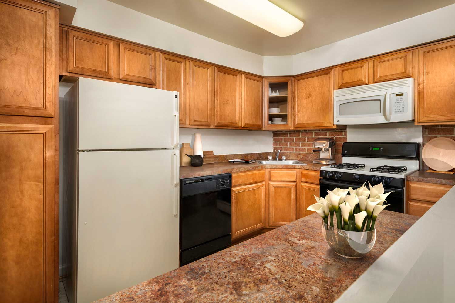 Kitchen with plenty of counter space at Village Square West Apartments