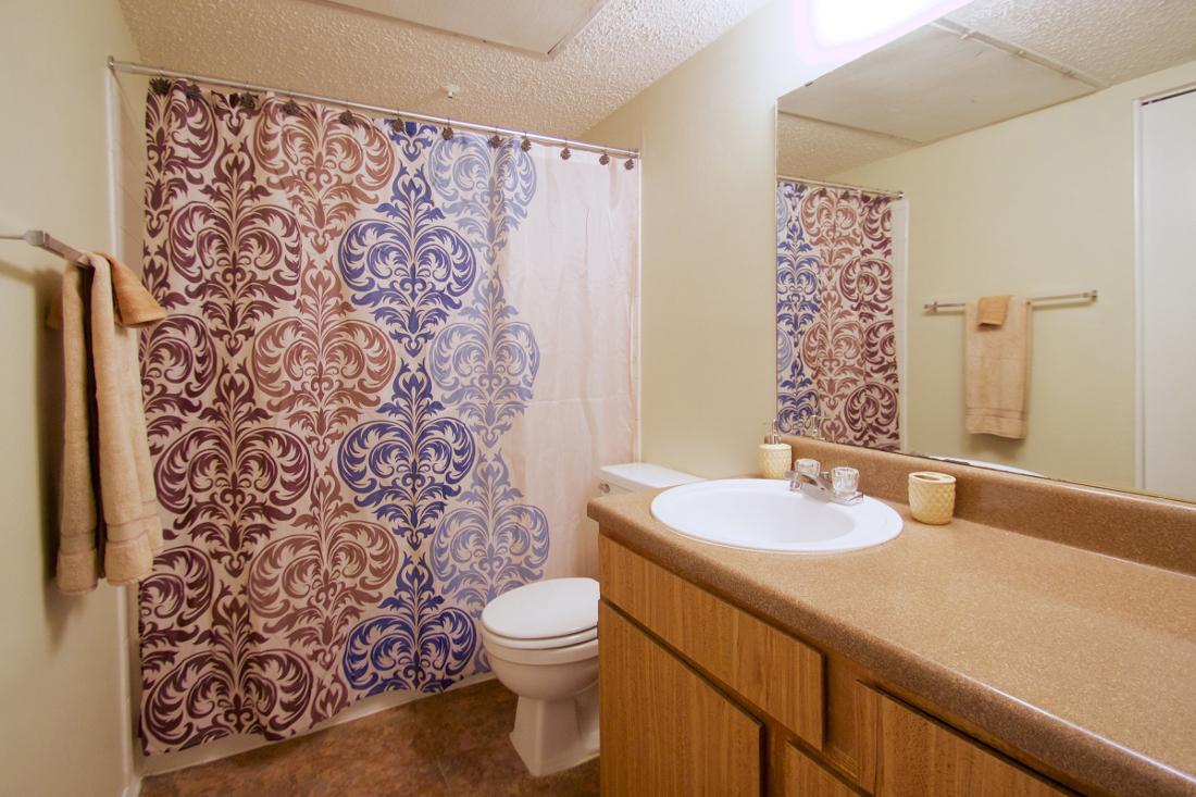 Shower and Tub Combination at Villas of Oak Creste Apartments in San Antonio, TX