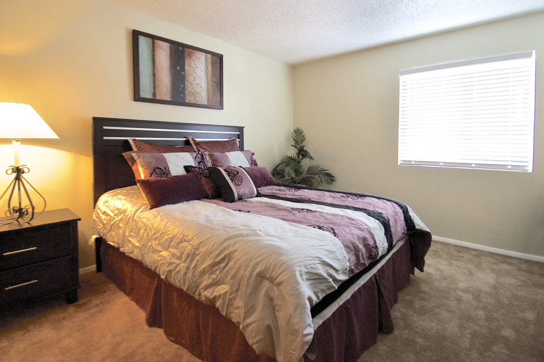 1-Bedroom Apartments for Lease at Villas of Oak Creste Apartments in San Antonio, TX