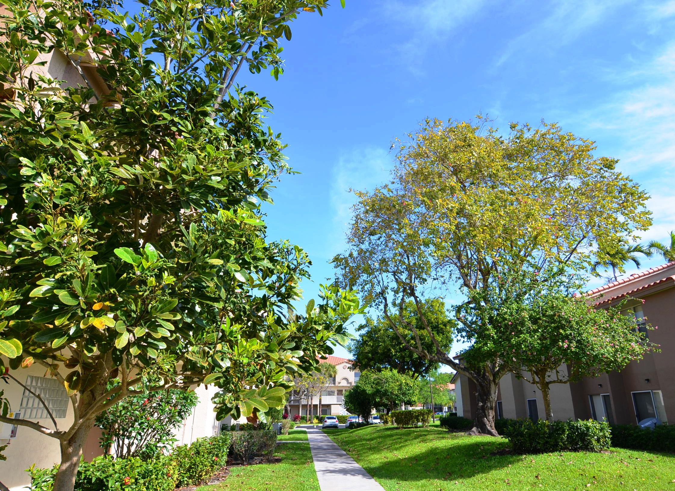 Lush backyard and walkway at Waterford Point Apartments in Miami, Florida