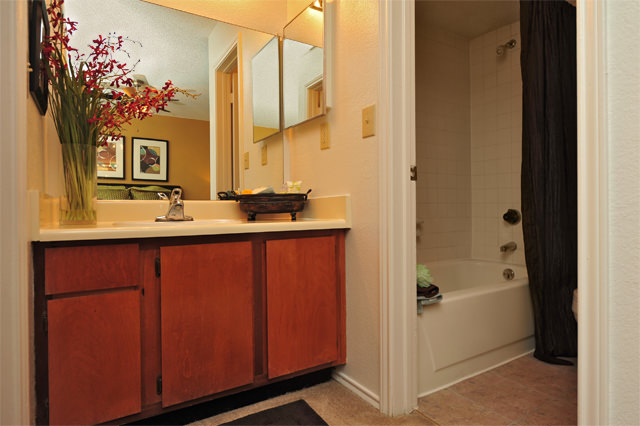 Bathtub and Shower Combination at Westwind Apartments in Denton, TX