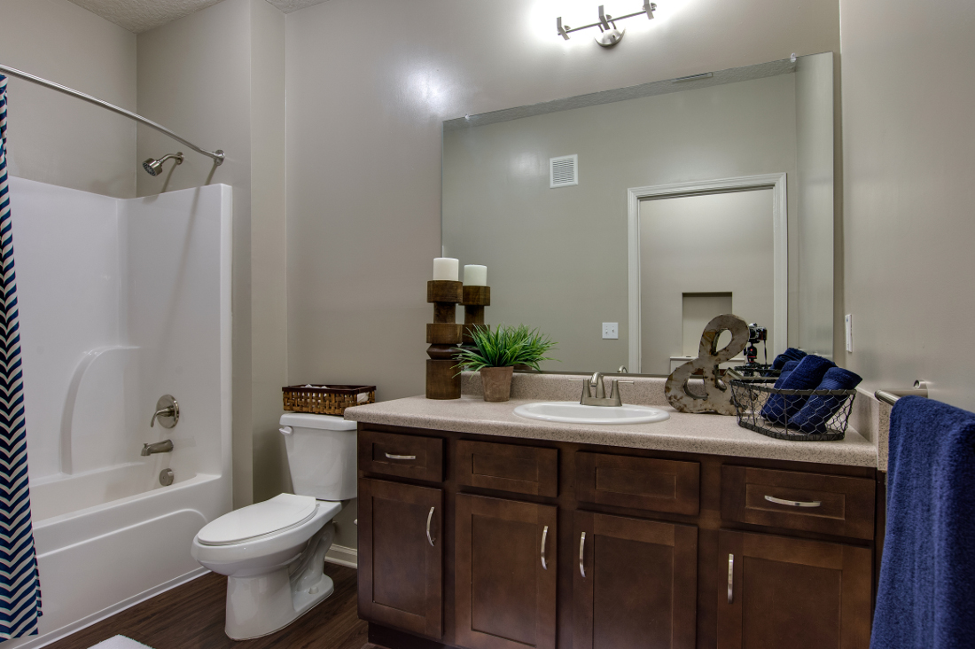 Tub and Shower Room at Whitepalm Luxury Apartment Homes in Port Orange, FL