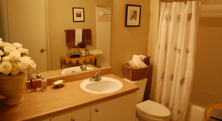 Large Bathroom Vanities at White Rock Apartment Homes in San Antonio, Texas