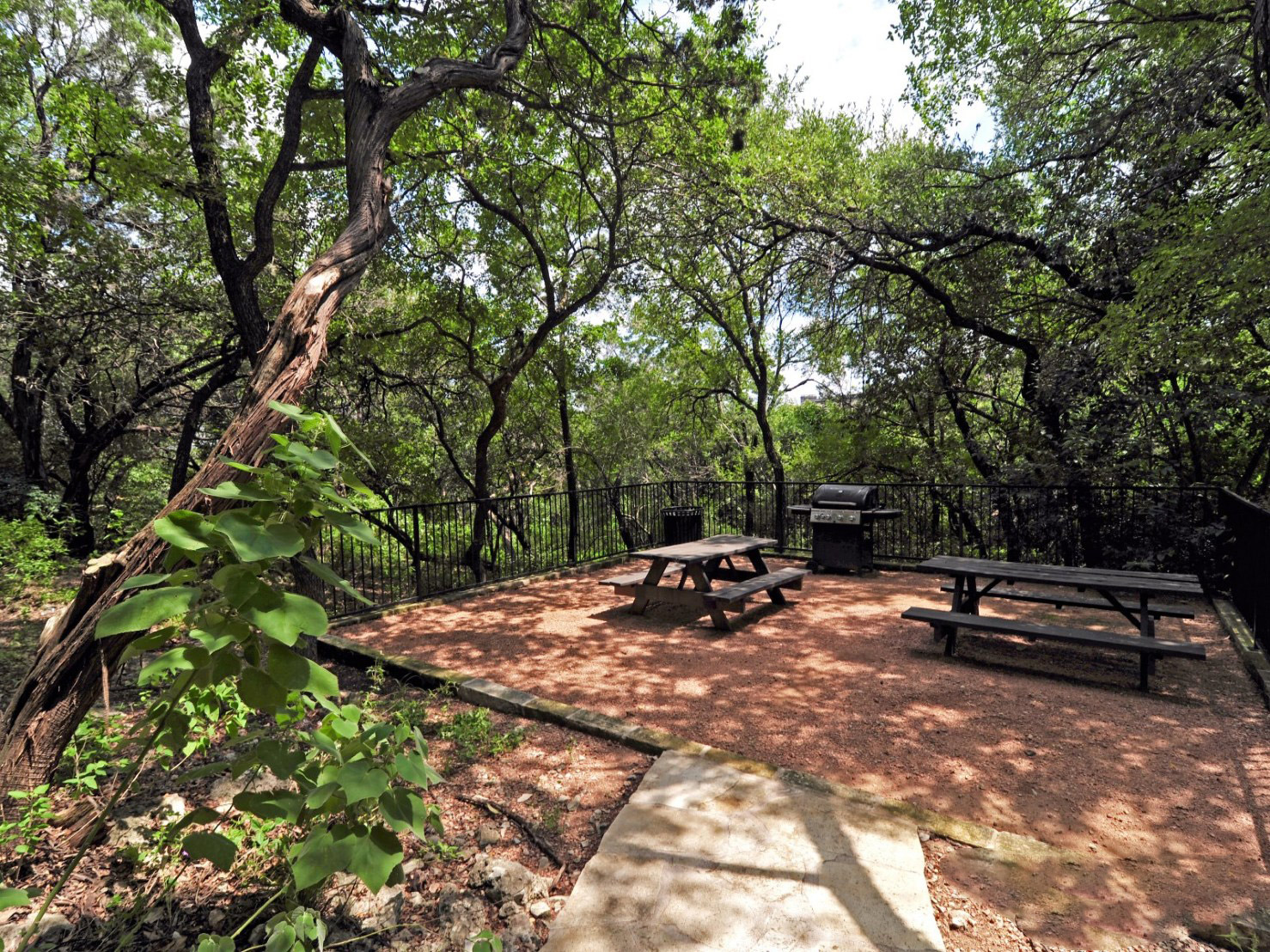 Picnic Area at Waters at Barton Creek Apartments in Austin, TX