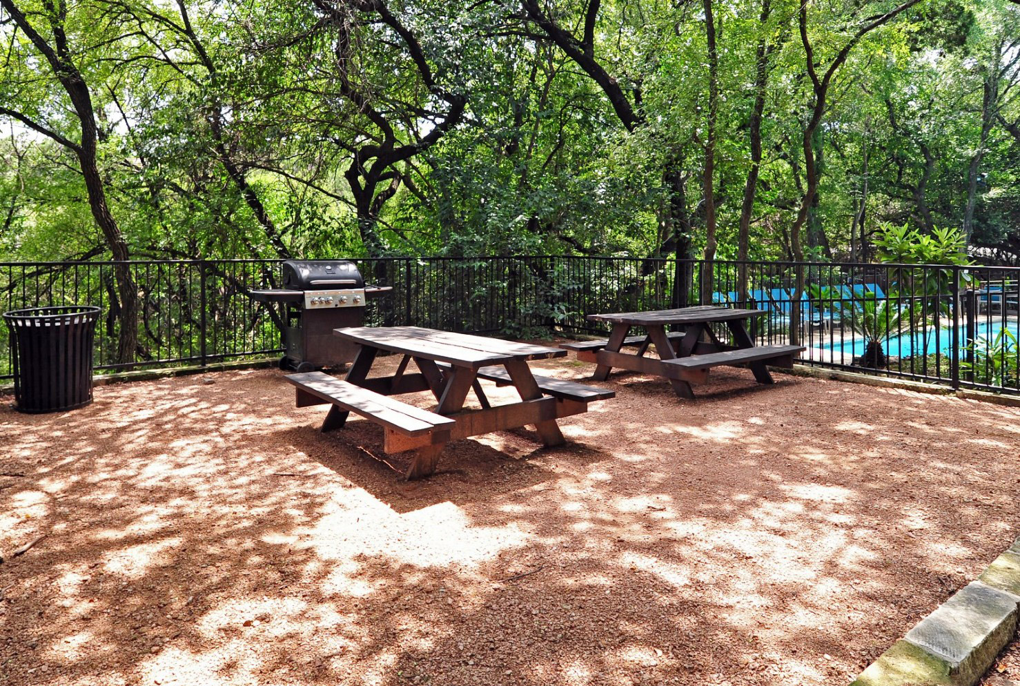 Picnic Area Next to Pool at Waters at Barton Creek Apartments in Austin, TX