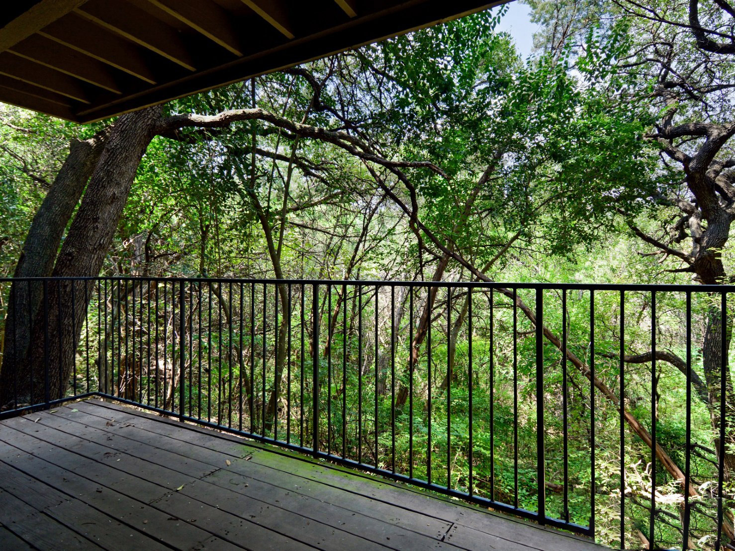 Private Balcony with Lush Landscaped Views at Waters at Barton Creek Apartments in Austin, TX