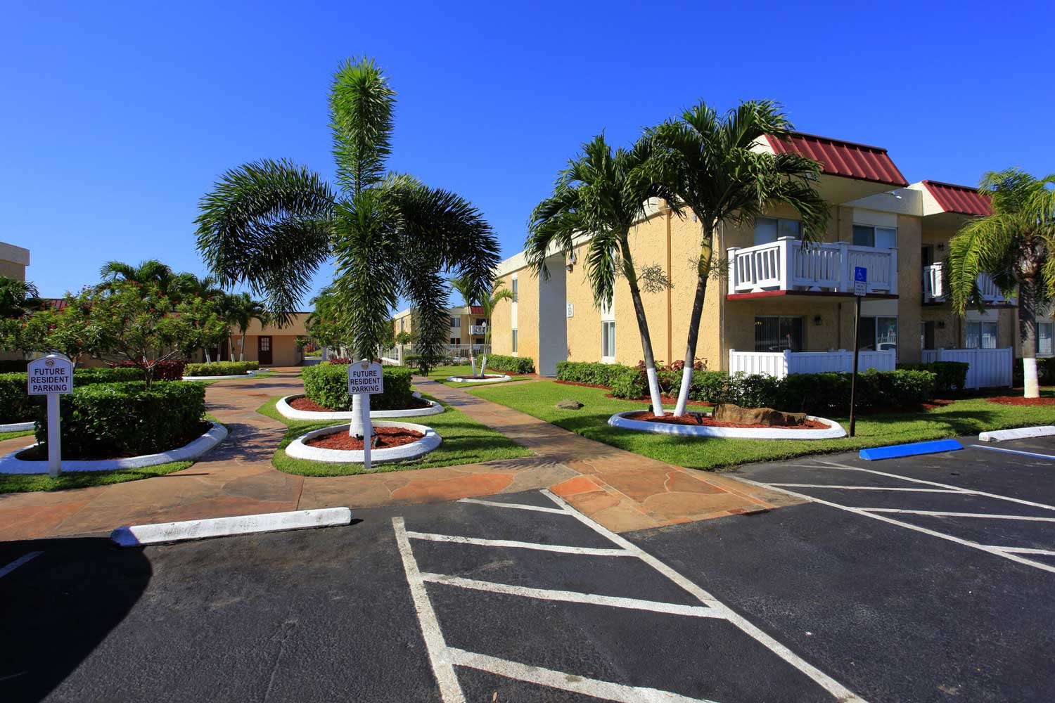 Lush Landscaping with Palm Trees at Windsor Forest Apartments in Pompano Beach, FL