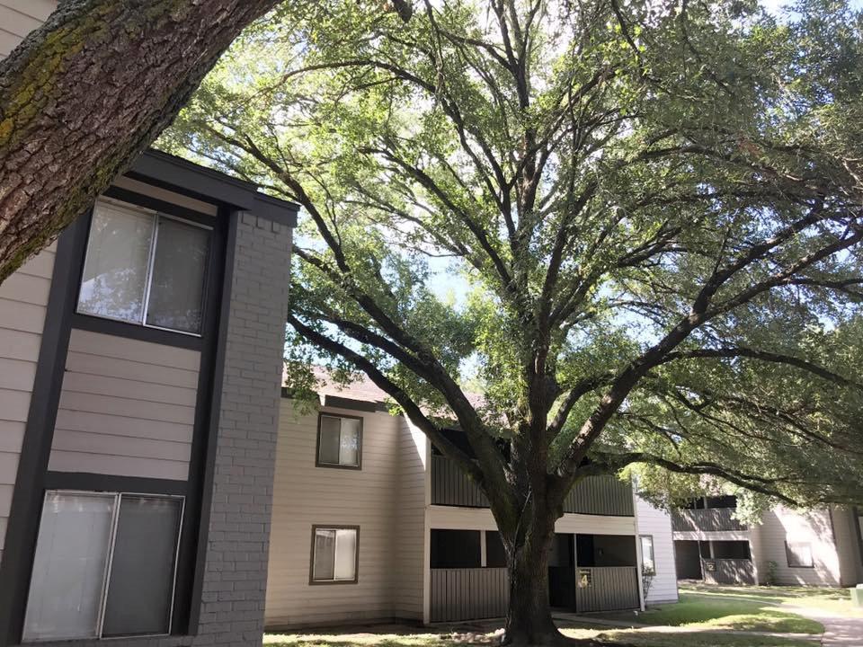 Victoria Apartment Rentals at Windsor Park Apartments in Victoria, Texas