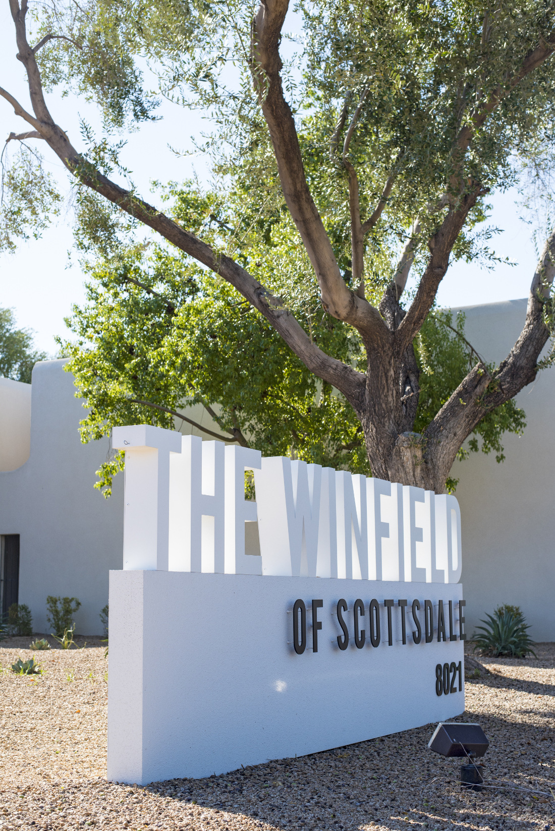 The Winfield of Scottsdale