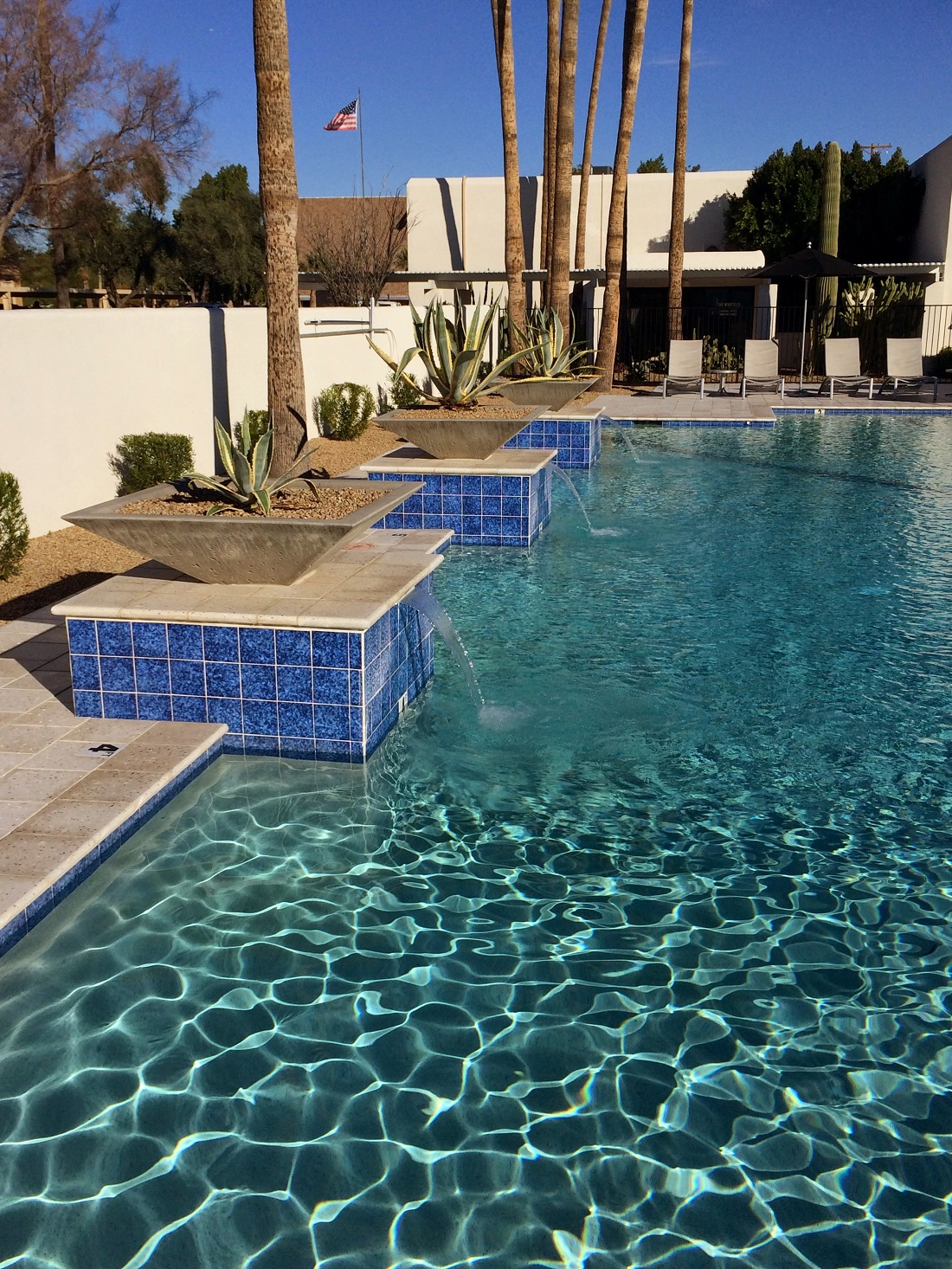Gorgeous Swimming Pool at The Winfield of Scottsdale Apartments in Scottsdale, Arizona