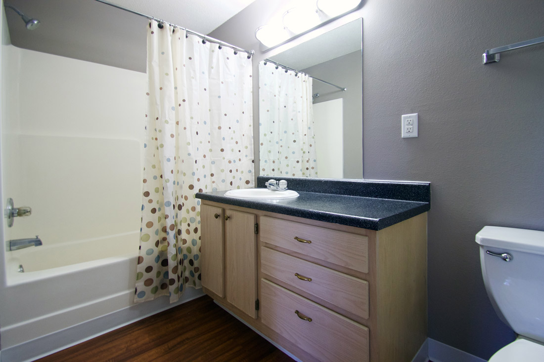 Shower and Tub Combination at Woodbury Heights Apartments in Sioux City, IA