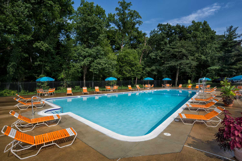 Relaxing swimming pool at Woodmont Park Apartments in Alexandria, VA