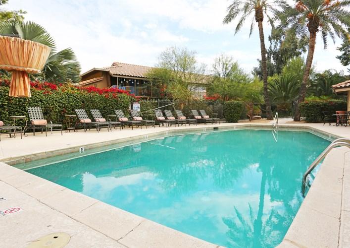 Beach-Inspired Pool at Zazu Apartments in Phoenix, Arizona